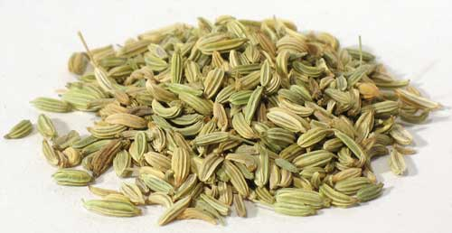 Fennel Seed 1oz 1618 gold