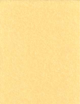 "Light Parchment 5 Pack (8 1/2"" x 11"")"